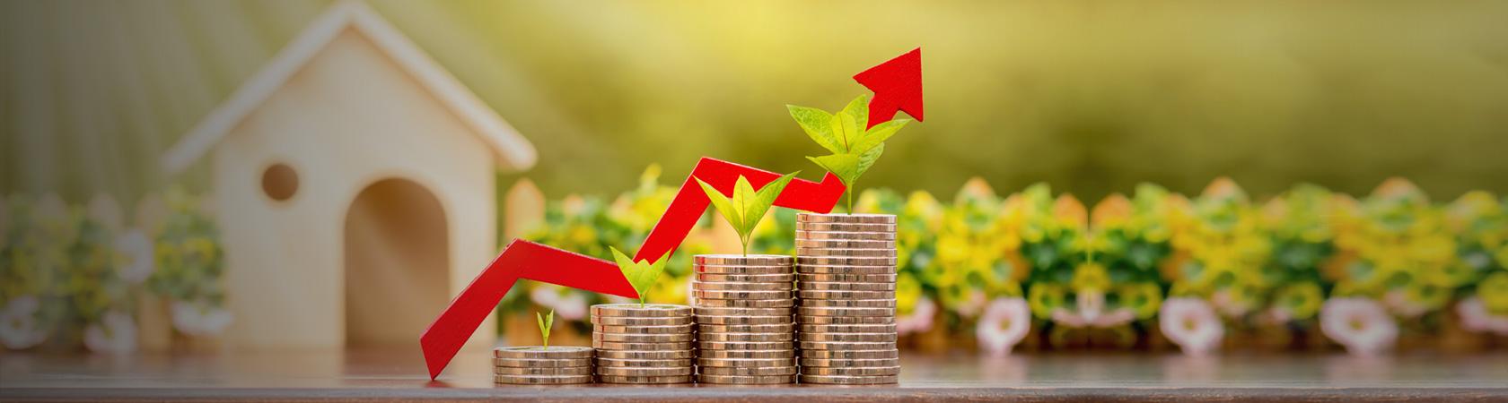 blog finanzas
